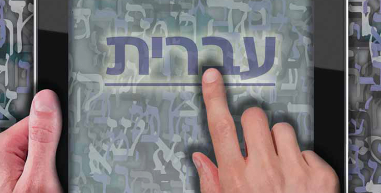 Article by Rabbi Gottlieb in Contact